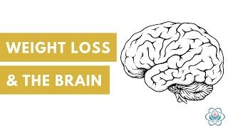 Weight Loss and the Brain