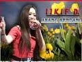 Download Lagu Ikif kawasima-akang kendang diva rama Mp3 Free