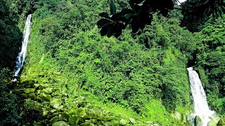 Dominica is a mountainous Caribbean island nation with natural hot springs and tropical rainforests. Morne Trois Pitons National Park is home to the ...