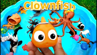 Learn Colors With Wild Animals and Sharks in Blue Water Tub Toys