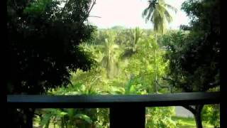 Koh Phangan - Thailand - 2 Bedroom House For Rent