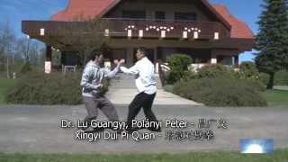 Dr. Lu Guangyi – Xing Yi Dui Pi Quan