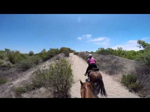 San Diego Horse Back Riding