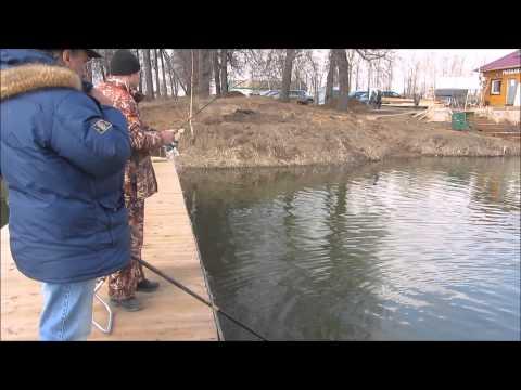рыбалка в купелинка форум