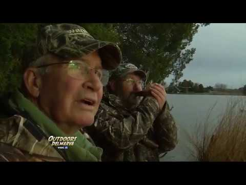 Goose Hunting on the Little Choptank River with Capt  Willie Dykes
