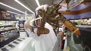 Carson City (NV) United States  city pictures gallery : Live Lobster in Carson City, Nevada, USA