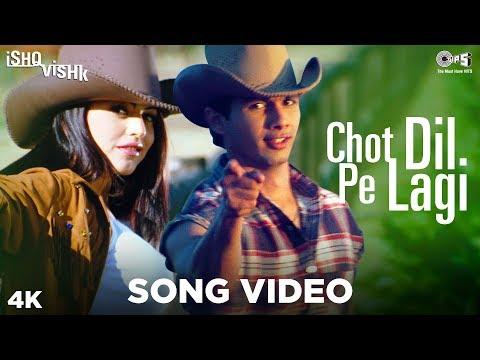 Chot Dil Pe Lagi Song Video - Ishq Vishk   Alisha Chinai & Kumar Sanu   Shahid & Shehnaz