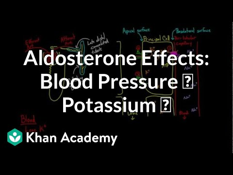 Aldosterone raises blood pressure and lowers potassium | NCLEX-RN | Khan Academy