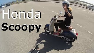 7. My Wife's 50cc Honda Scoopy Scooter