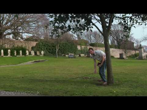 Tajemniczy kabel w parku