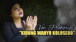 Video KIDUNG WAHYU KOLOSEBO cipt Sri Narendra Kalaseba cover by Proborini MP3, 3GP, MP4, WEBM, AVI, FLV Maret 2019