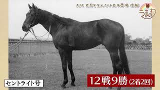 #24 名馬を生んだ小岩井農場 後編