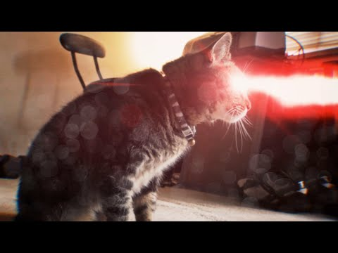 x-men: cyclops cat (ciclope versione gatto!)