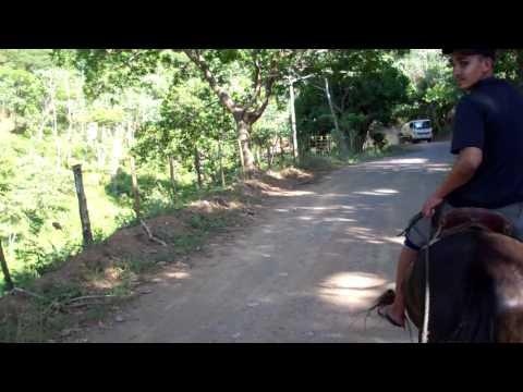 Miss KY Horseback Riding in Roatan