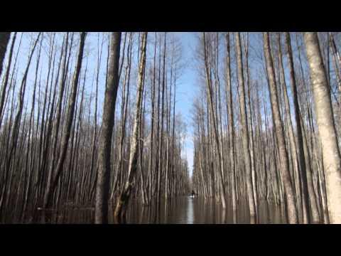 Nature Tourism in Estonia