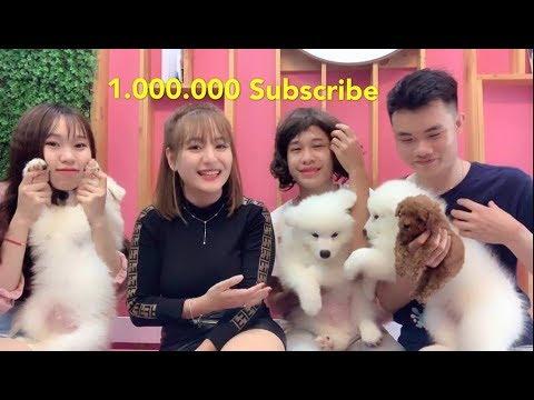 Mật Pet Family - 1.000.000 Subscribe . Công bố Event tặng quà - Thời lượng: 11 phút.