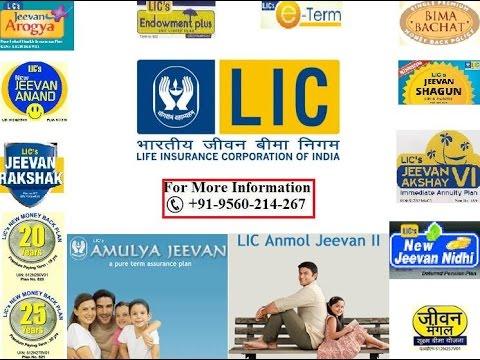 LIC of India Policies Plans Merchant Agent Portal Customer Care Number NAV Wealth Market Profit Plus