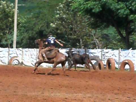 João Luis e João Pedro na final da vaca gorda em PINHAL GRANDE
