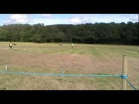 - Formula Grasstrack Association
