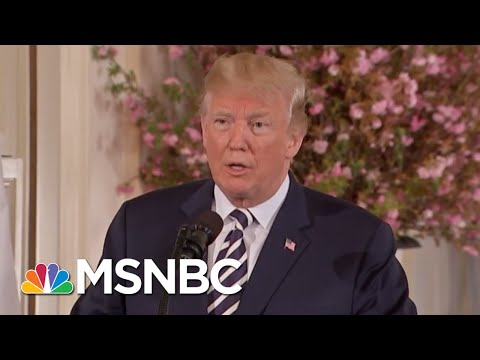 President Trump I Have A Phony Cloud Over My Head That Doesnt Exist  The 11th Hour  MSNBC