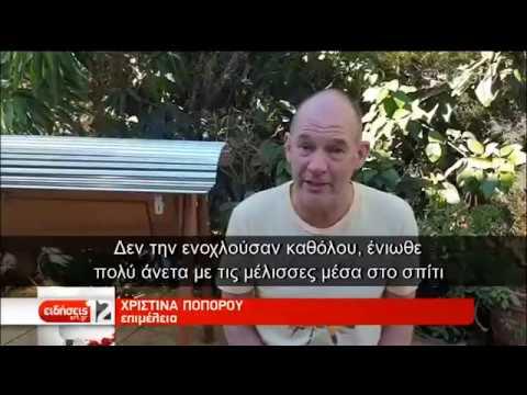 Κρατούσε κυψέλη μελισσών για 10 μήνες στο σπίτι της! | 23/08/2019 | ΕΡΤ