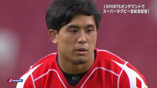 Sunwolves v Sharks Rd.13 Super Rugby Video Highlights 2017