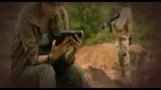 Nonton Dead  Mine  2012  polski  dubbing Film Subtitle Indonesia Streaming Movie Download