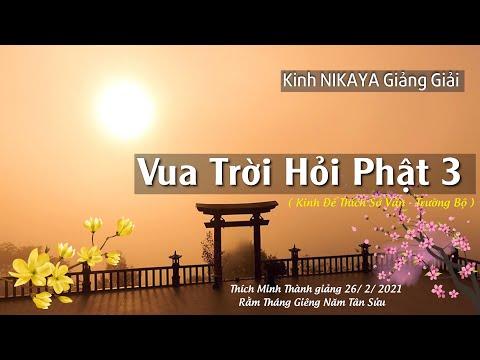 Kinh NIKAYA Giảng Giải - Vua Trời Hỏi Phật 3 - Kinh Đế Thích Sở Vấn - Trường Bộ