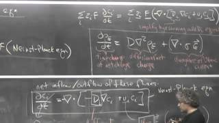 Nernst-Einstein Relation And Electrical Double Layers
