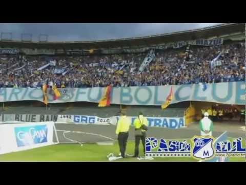 Blue Rain y Los Comandos Azules / Fecha 7 Liga Postobón 2012-II / Millonarios vs Cali - Comandos Azules - Millonarios
