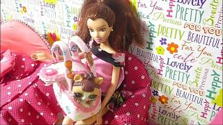 DIY Miniature | Pet Carrier for doll | Tutorial | Crafts