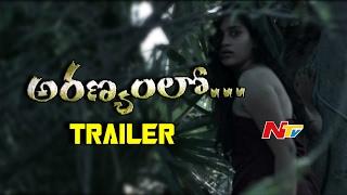 Aranyamlo Movie Teaser    Sravani   Karunakar    NTV