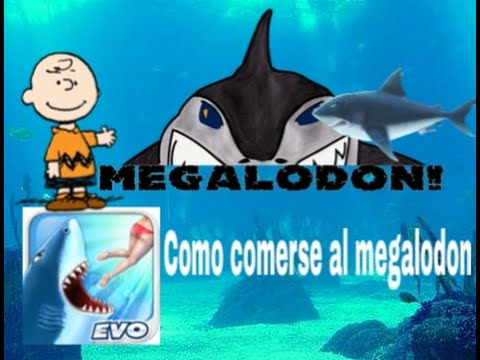 Hungry Shark Evolution / Como comerse el Megalodon con cualquier tiburon