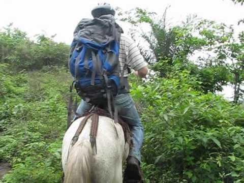 horseback riding nc mountains