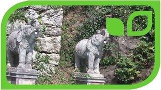 #1286 Parco Scherrer Morcote - Arthur Scherrers Indien
