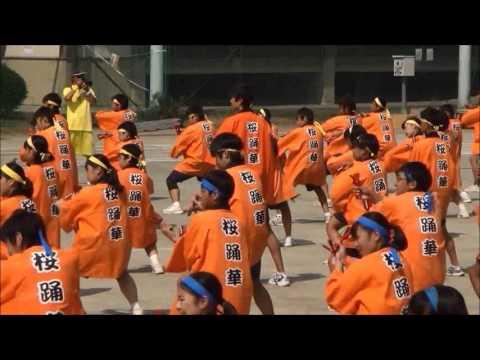 川越市立高階中学校桜踊華 2015体育祭