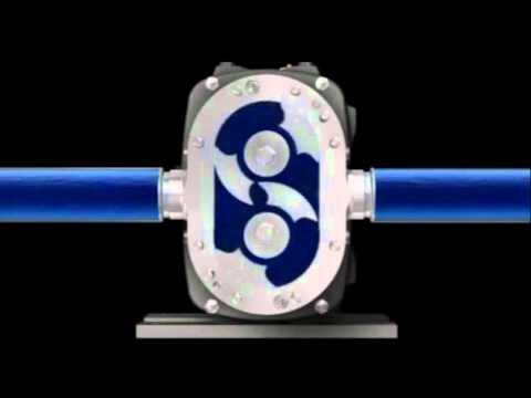 Fristam FKL Series Rotary Lobe Pump