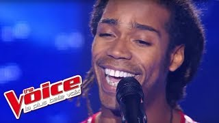 Video Adele - Someone Like You | Jua Amir | The Voice France 2012 | Blind Audition MP3, 3GP, MP4, WEBM, AVI, FLV Agustus 2018