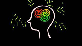 A Brief Introduction to the Default Mode Network