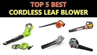 8. Best Cordless Leaf Blower 2019
