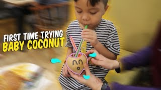 Video Baby Qahtan First Time Trying Baby Coconut | Baby Try #qahtanvlog MP3, 3GP, MP4, WEBM, AVI, FLV September 2019