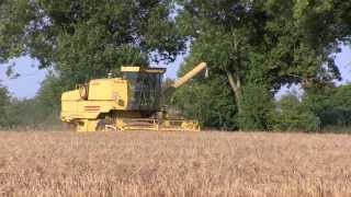 A New Holland 8060 harvests a field of Barley.