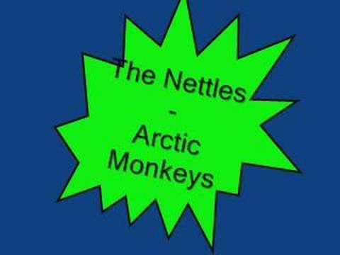 Arctic Monkeys - The Nettles lyrics