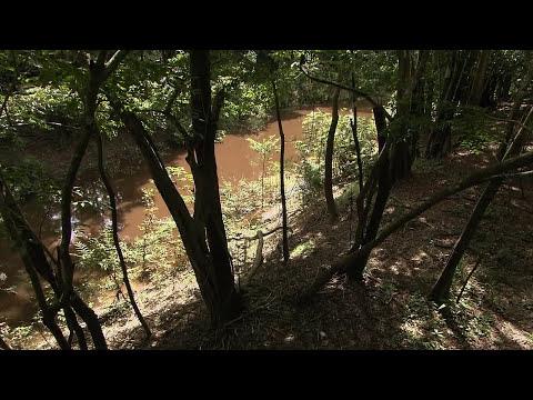 Амазонка HD (видео)