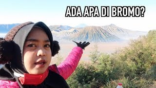 Video Explore Bromo Musim Dingin. Ada Esnya 😱 MP3, 3GP, MP4, WEBM, AVI, FLV Februari 2019