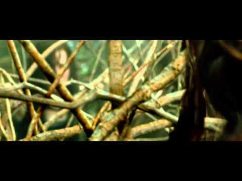 Posesión Infernal: Evil Dead - Tráiler Final en Español - Estreno 05 de Abril de 2013
