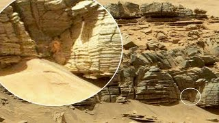 It honestly couldn't be anymore obvious that life exists on Mars. Check these out: • Second Channel: https://www.youtube.com/user/Peladophobian • Twitter: ht...