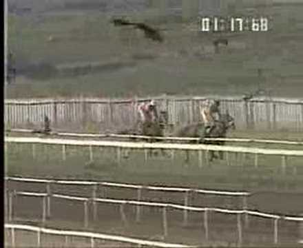 Indian Horse Racing- Velvet  Rope