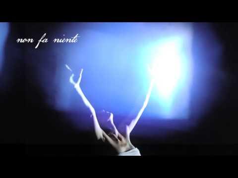 Immagine della canzone Non fa niente di Elisa