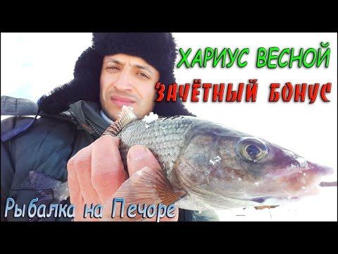 youtube рыбалка на хариуса